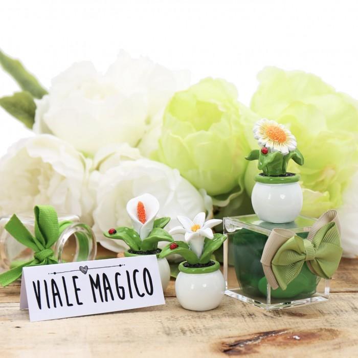 Matrimonio Bomboniere : Statuine piantine matrimonio bomboniere confezionate plexiglass