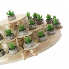 Bomboniere Promessa di matrimonio Candele con vasetto e Piantine Cactus di colore verde