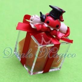 Plexiglass Rosso con Coccinella Pergamena Maxi