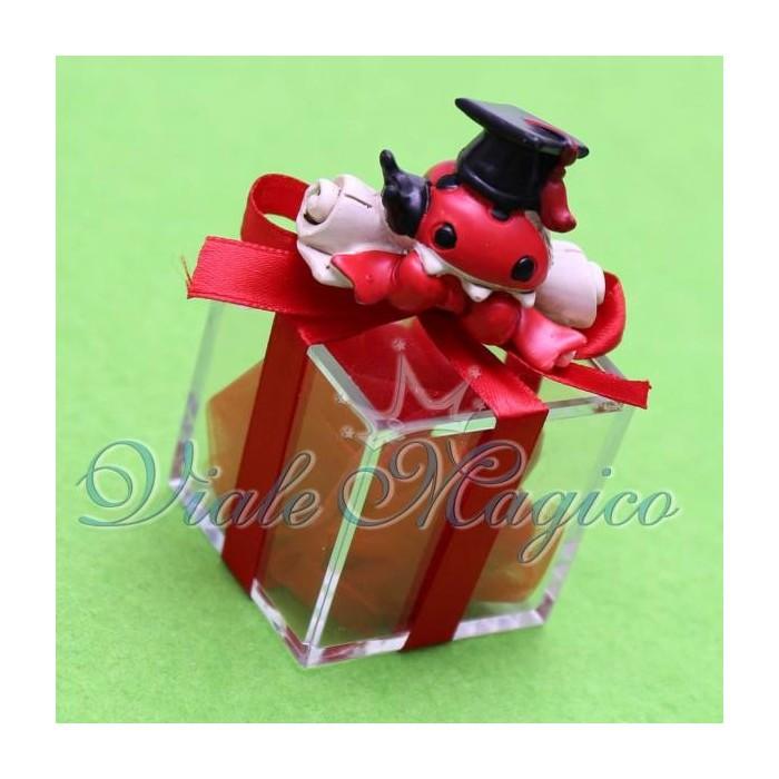 Bomboniere Laurea Plexiglass Rosso con Coccinella Pergamena Maxi Confettata