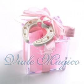 Plexiglass Rosa con Ferro di Cavallo per Bimba