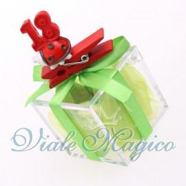 Bomboniere Compleanno Plexiglass Verde con Mollettina Coccinella 18 Anni