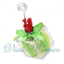 Plexiglass Verde con Memoclip Coccinella 18 Anni