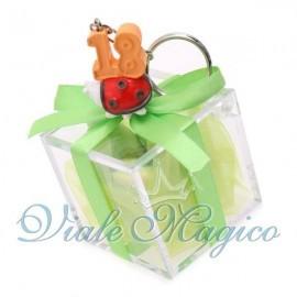 Plexiglass Verde con Portachiave Coccinella 18 Anni