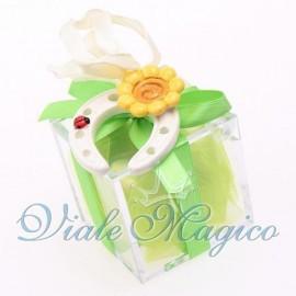 Plexiglass Verde con Ferro di Cavallo Portafortuna