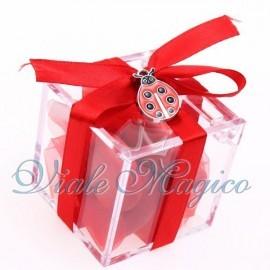 Plexiglass Rosso con Ciondolo Coccinella