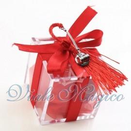 Plexiglass Rosso con Martello Giudice