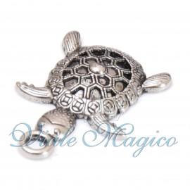 Tartaruga Portafortuna Compleanno Laurea