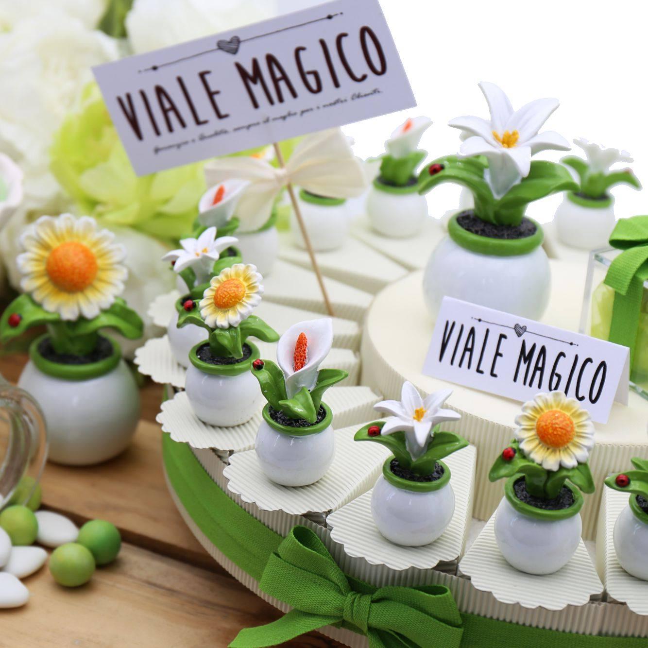 Bomboniere Piantina Matrimonio Eleganti Confettata